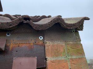 bird proofing ot eaves in harrogate