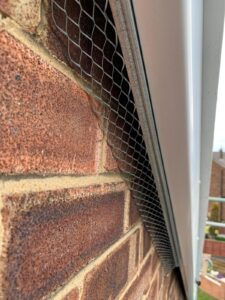 bird proofing wetherby